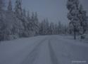 Arctic-Lapland-Rally-2016-4