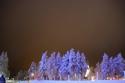 Arctic-Lapland-Rally-2016-57
