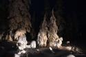 Arctic-Lapland-Rally-2016-9